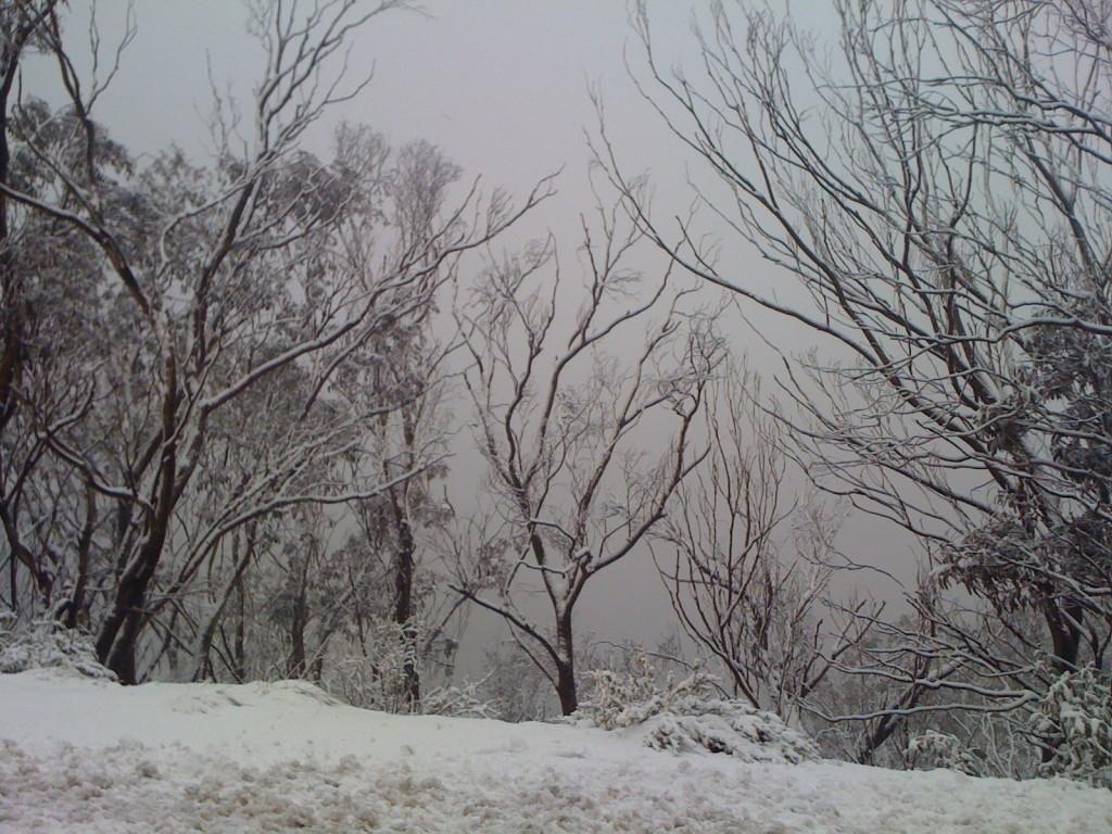 snow-018