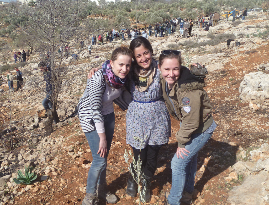 Rabbis for Human Rights who organised a trip, for internationals and Israelis, to plant olive trees for Palestinian farmers whose crop had been purposely destroyed by Israeli settlers