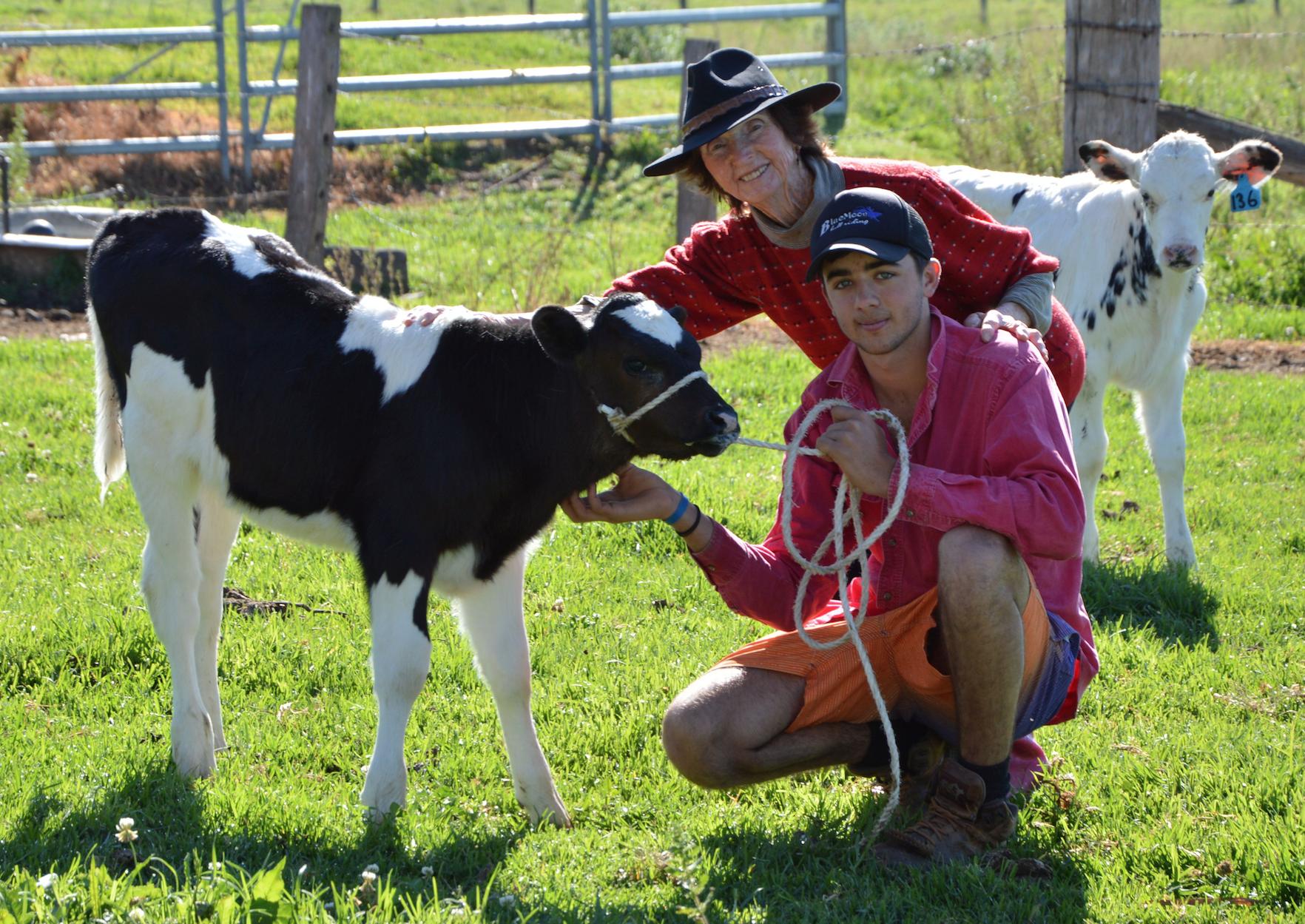 85 Year Old Kempsey Female Farmer Still Milks Every Day