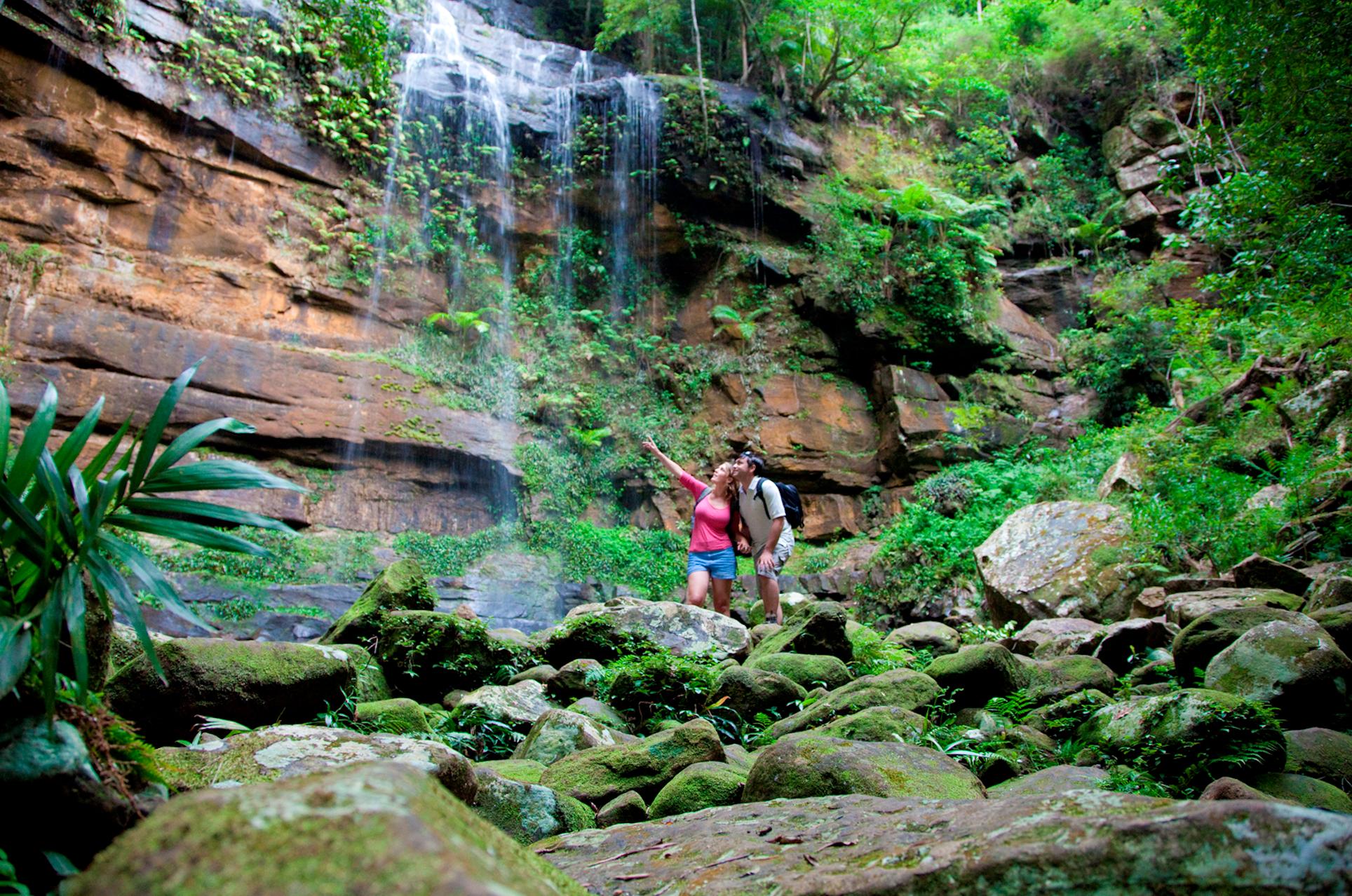 Gap Creek Falls