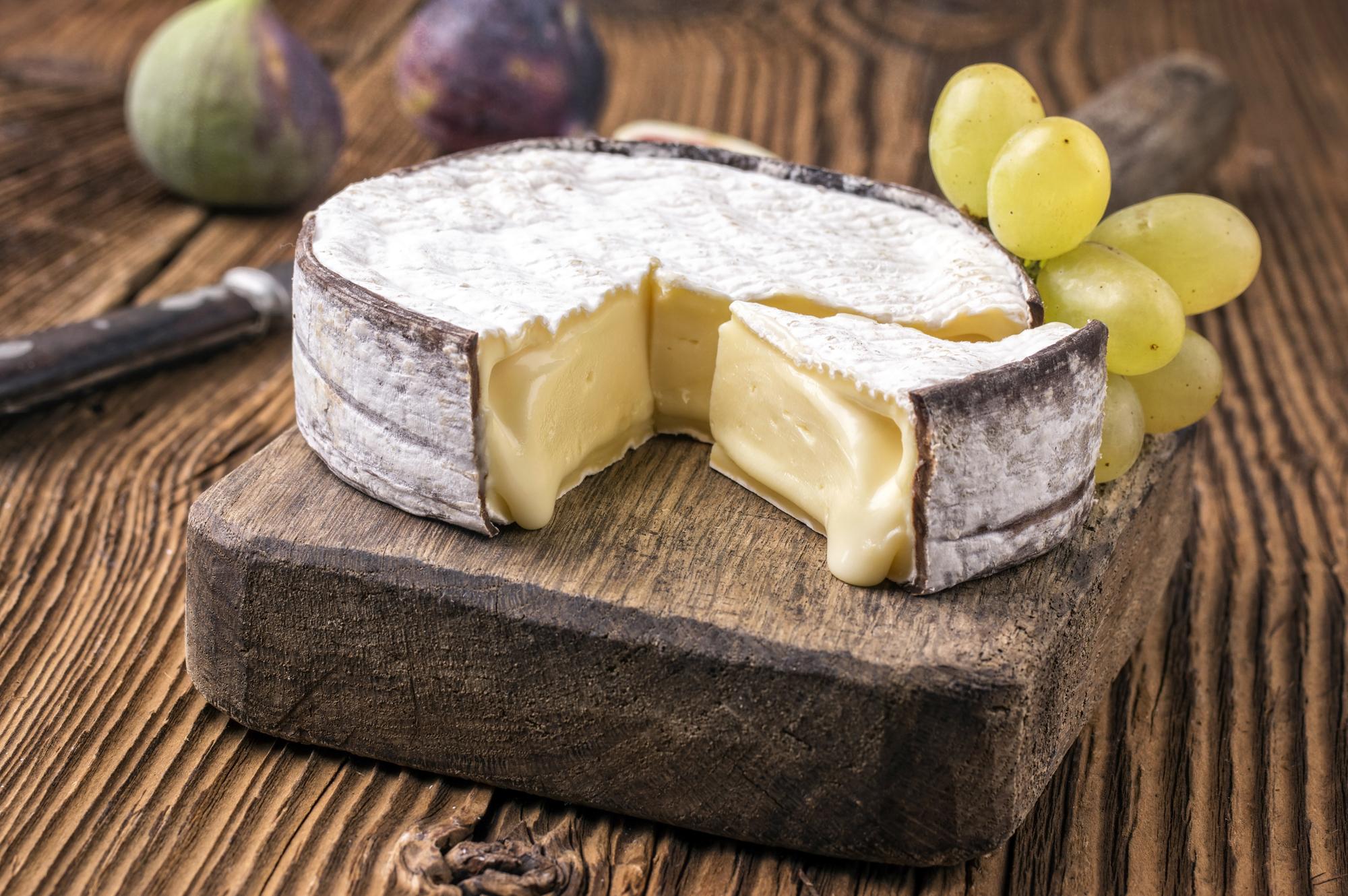 Prahran's Say Cheese Festival