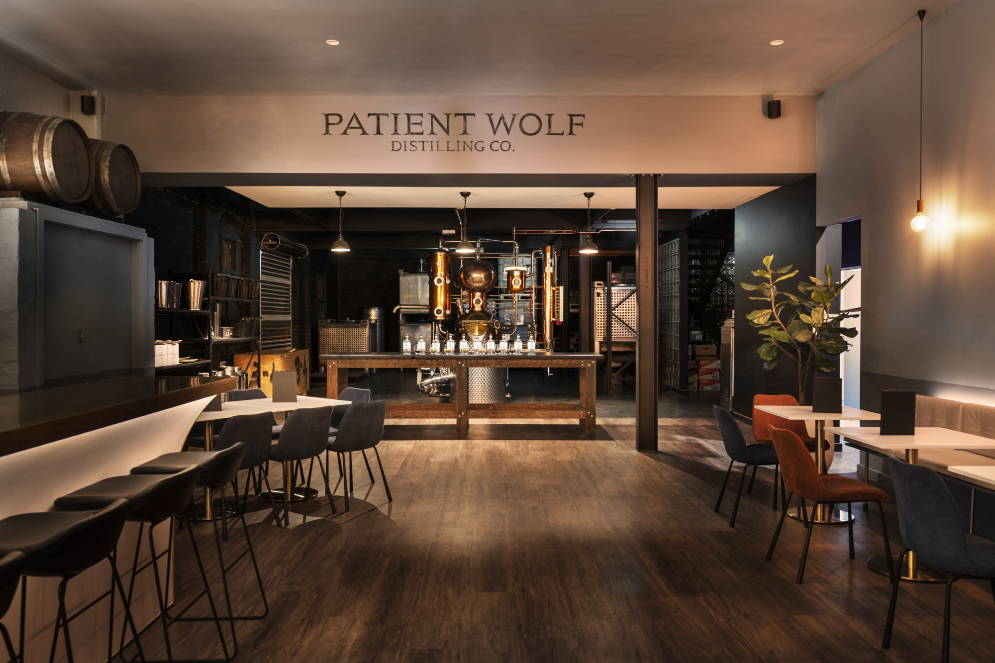 New G&T Festival With Patient Wolf And Long Rays Celebrates A Victorian First